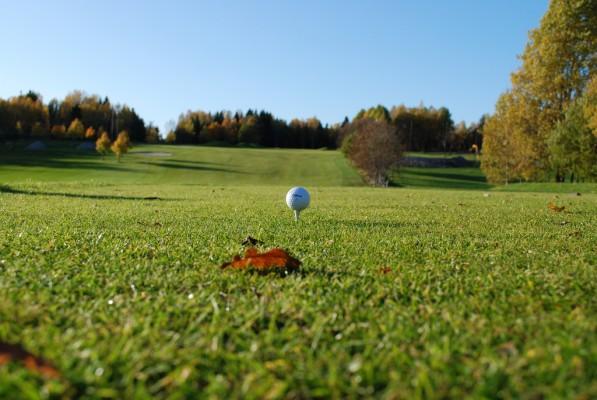 Balle de golf sur un tee, sur un green